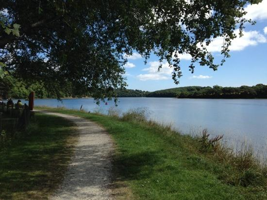 Boscawen park in Cornwall