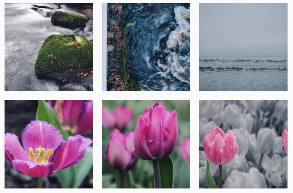 Cornish Instagrammers : @pixi3minx