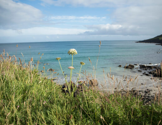 Exploring the Lizard: Coverack