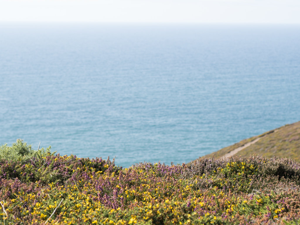 Moving to Cornwall: Relocating FAQs