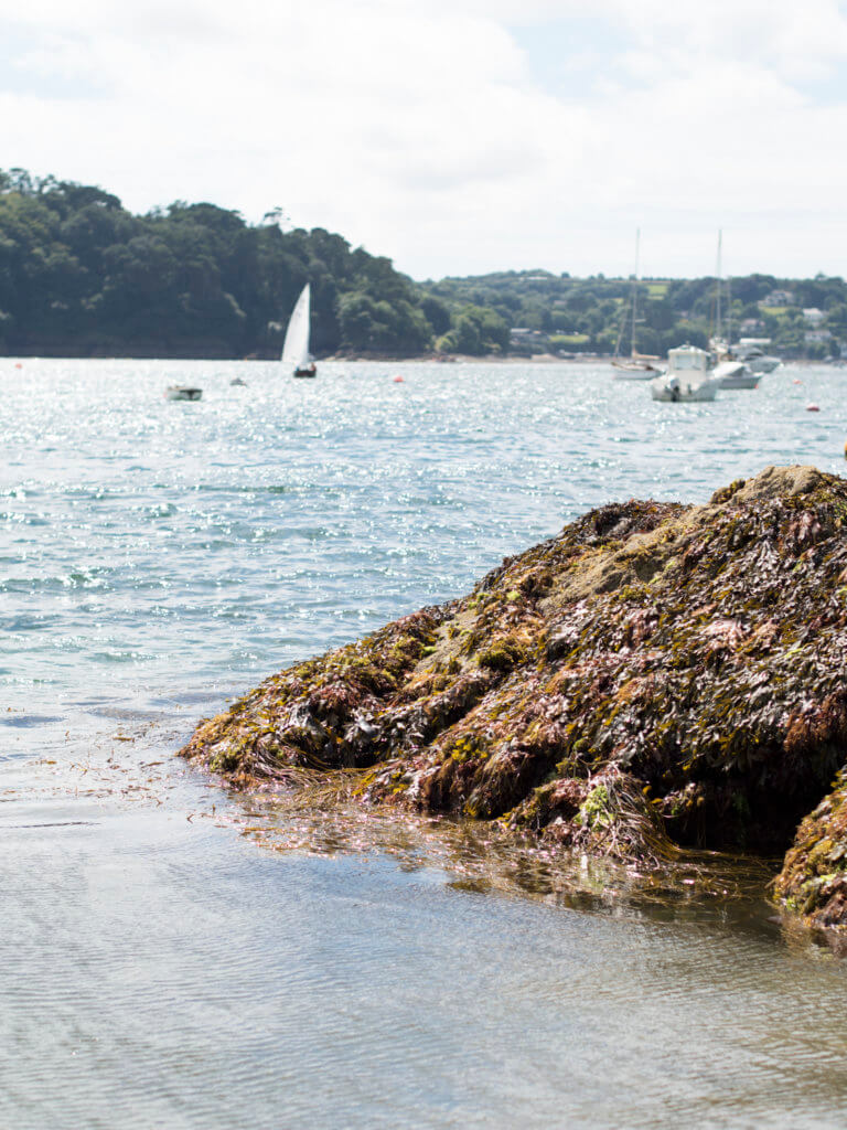 Grebe beach on Helford River