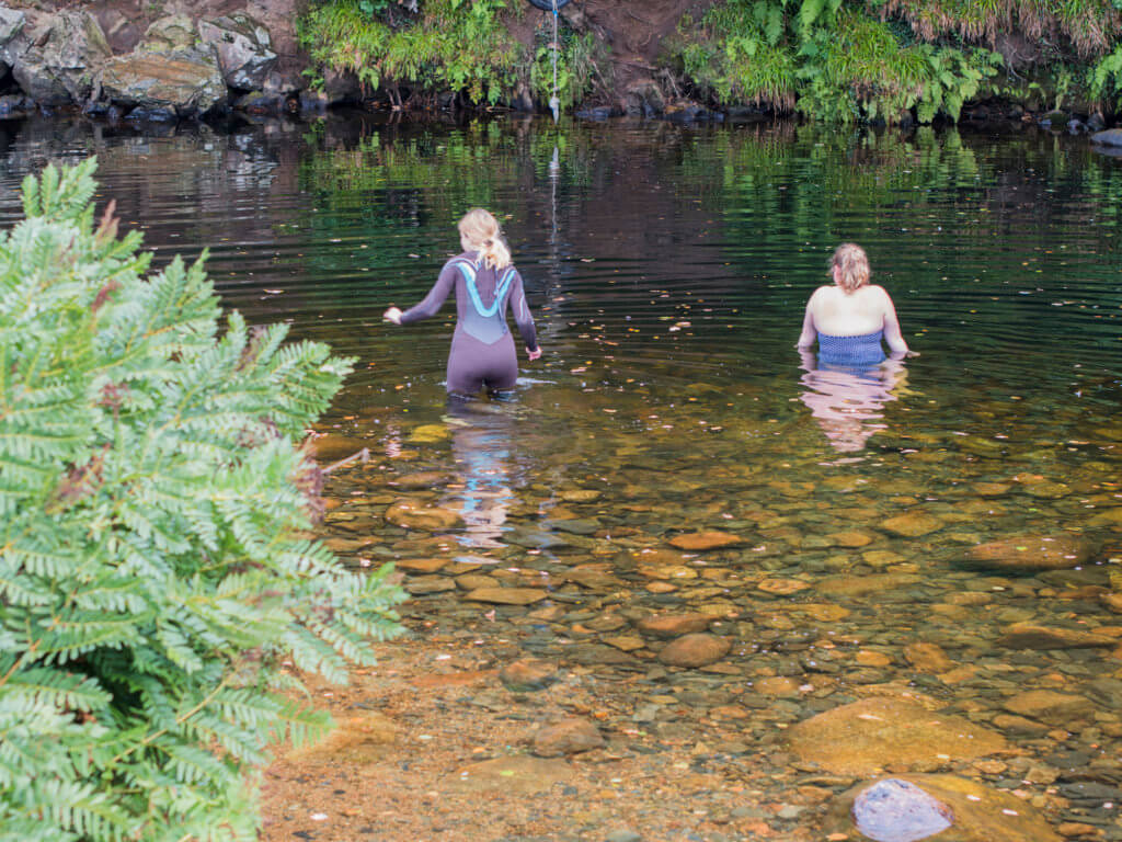 Wild Swimming in Dartmoor