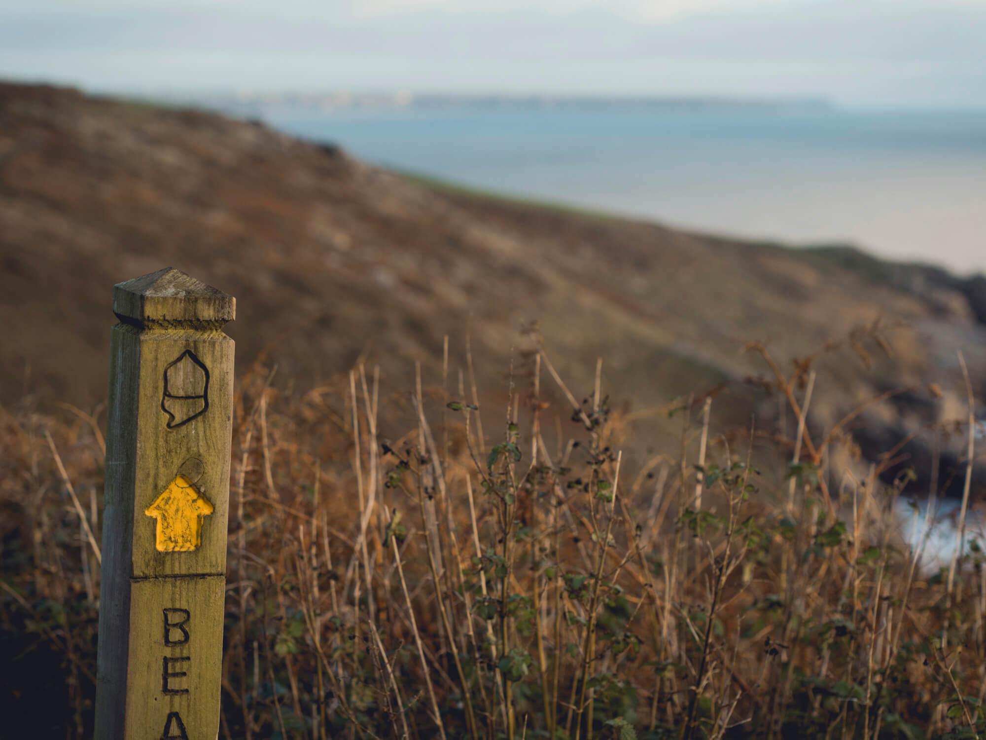 Wild Walks on Rinsey Head