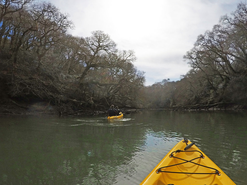 Kayaking on Helford River