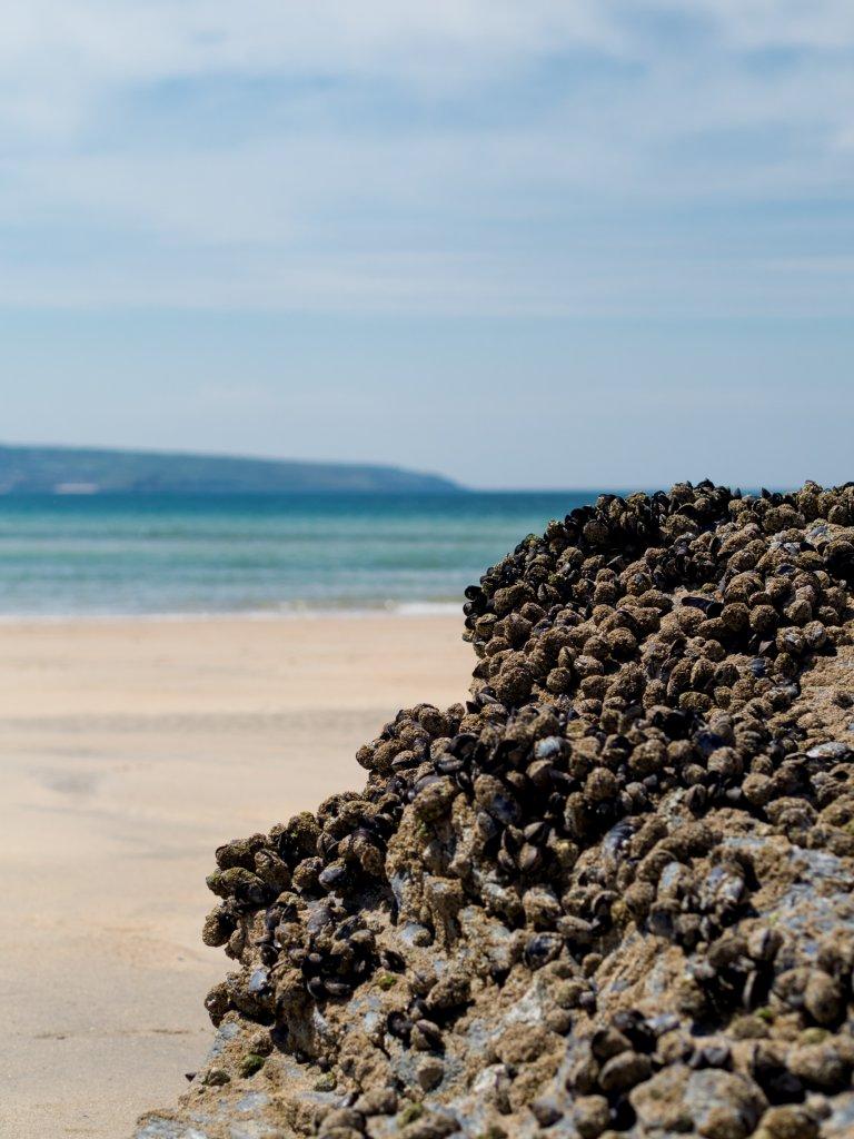 Godrevy beach