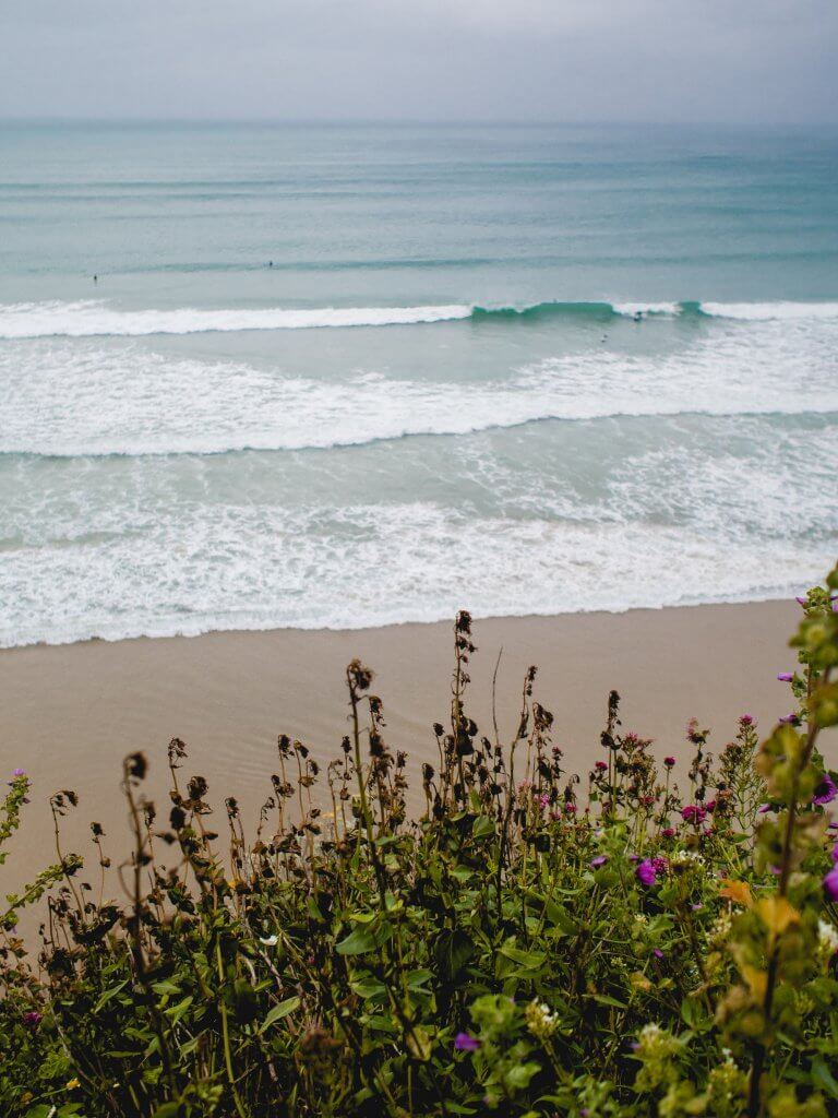 Yoga & Surf at Corinne's Surf Tour