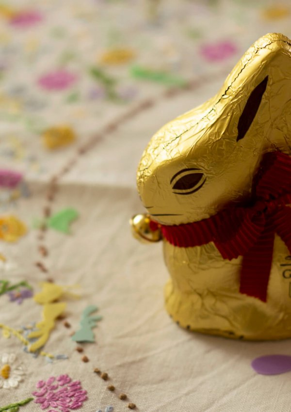 Puppies, Chickens & Chocolate Bunnies (Easter Weekend in Cornwall)