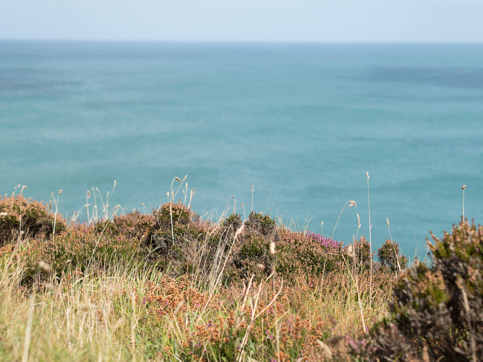 How to Visit Cornwall Sustainably