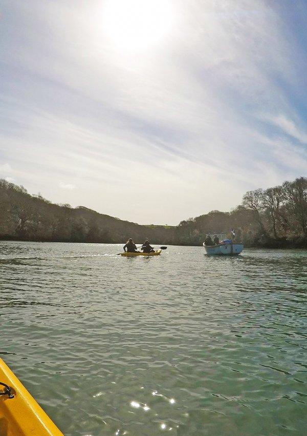 Kayaking on Helford River & Dinner at Rick Stein's Fish