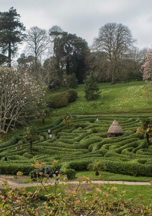 Mother's Day at Glendurgan Gardens