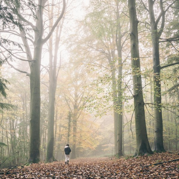 Autumn events in Cornwall