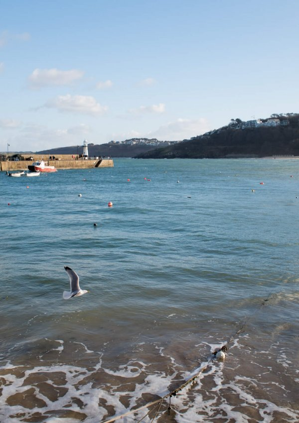 Valentine's in St. Ives