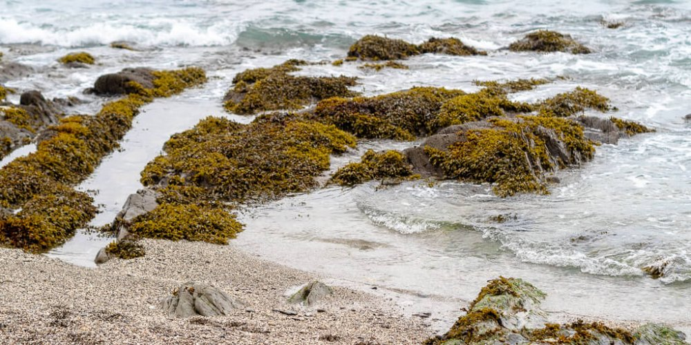 Nansidwell Beach