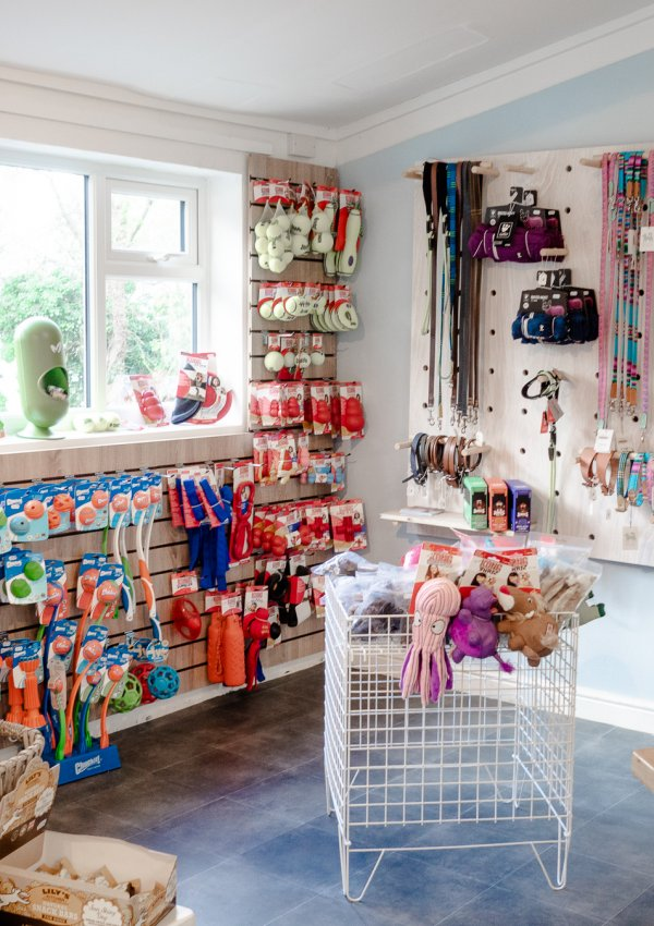 Natural Cornish Pet Shop & Doggy Day Care Cornwall: A Real Pet Paradise!