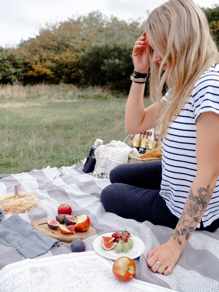 Picnic in Cornwall