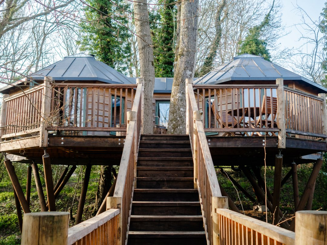 Treehouse in Somerset