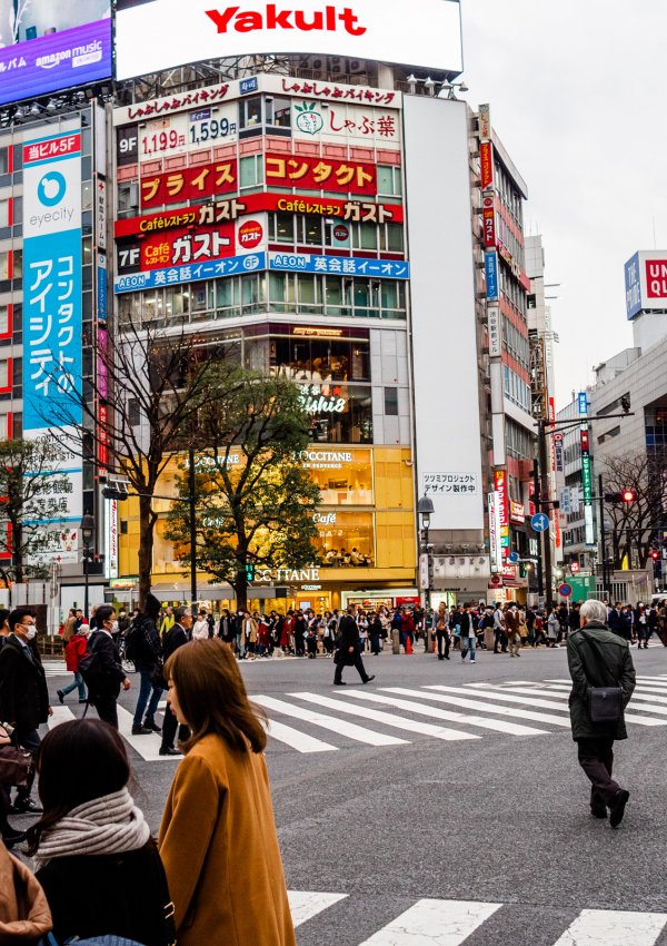 20 Must-Do Activities in Tokyo