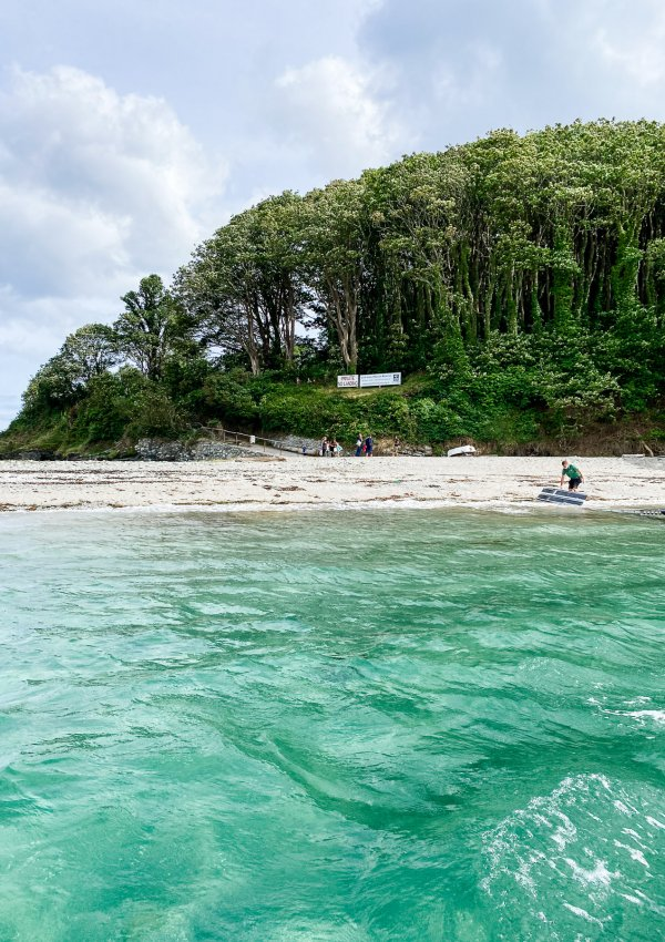 A Visit to Looe Island