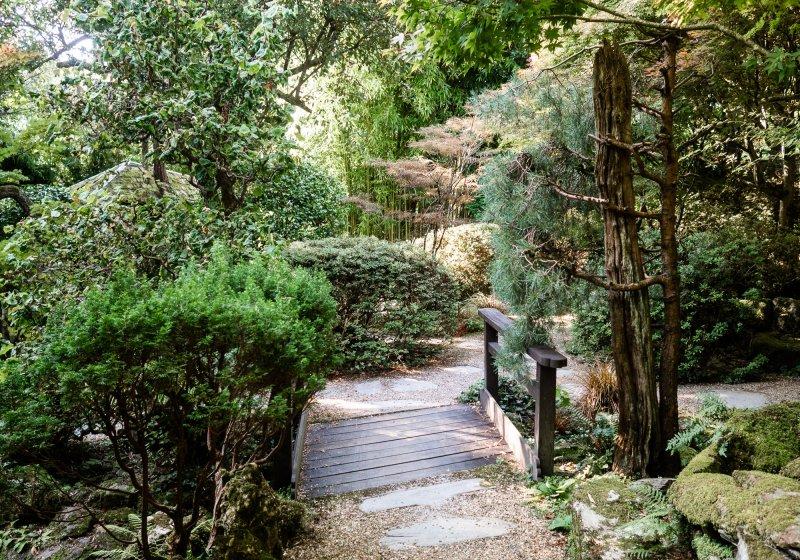 Japanese Garden in St Mawgan