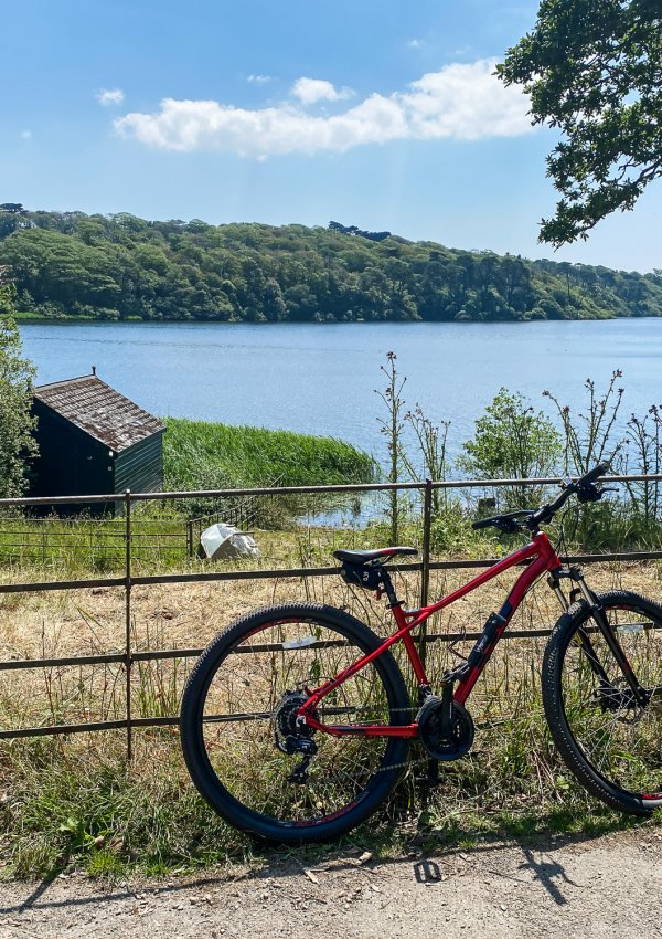 Cornwall's Most Scenic Cycle Trail (with Lakeside Cycles, Helston)